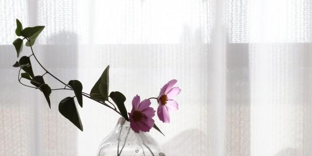 花を生活に取り入れよう